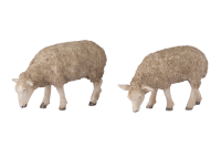 G Scale Grazing Sheep