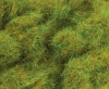 PECO 6mm Spring Grass (20g)